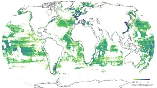 Maps of total fishing effort, with a dark theme and a light theme.