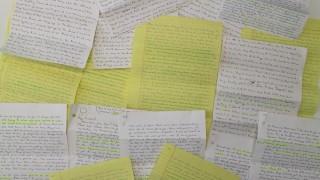 Briefe aus dem amerikanischen Gefängnis