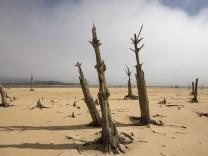 Dürre bei Kapstadt