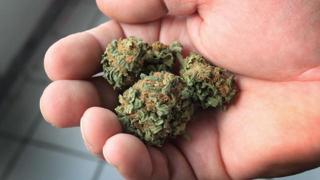 Cannabiskonsum als Schmerztherapie