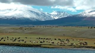 Es wird Herbst im Altai               Dokumentarischer Film  20 min Toni Ackstaller (Ebersberger Filmfreunde)