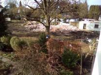 Baumfällung Puchheim