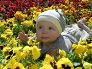 kleinkind in blumenbeet ; dpa