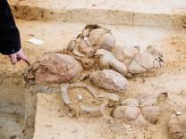 Siedlung aus der Bronzezeit im Tagebau Nochten entdeckt