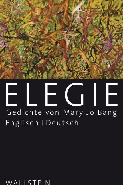 Elegie - Gedichte von Mary Jo Bang