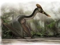 So könnte der Flugsaurier ausgesehen haben