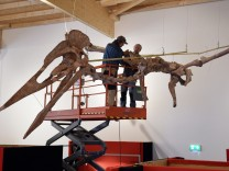 World's Biggest Winged Dinosaur Presented In Bavarian Museum