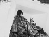 Kazuko Snow Dog