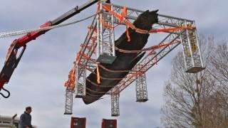 Bayerns ältestes Boot geborgen