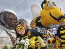 Neonikotinoide sorgen für Bienensterben