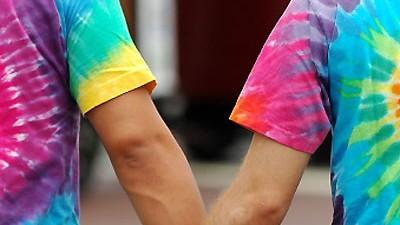 Verfassungsgericht zu Homo-Ehe