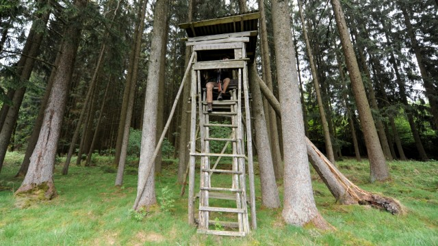 Umwelt und Naturschutz in Bayern Jagdsaison