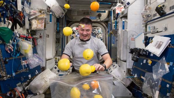Fresh fruit for NASA's astronauts, ISS - 25 Aug 2015