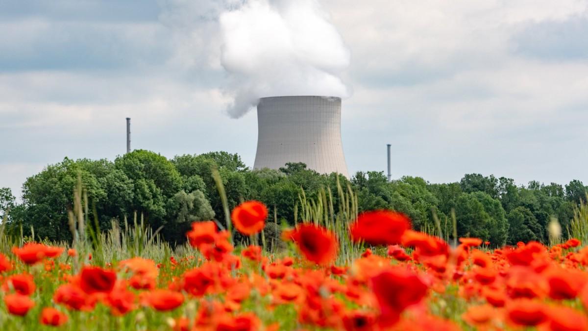 Klimawandel: Kernkraft statt Kohle?
