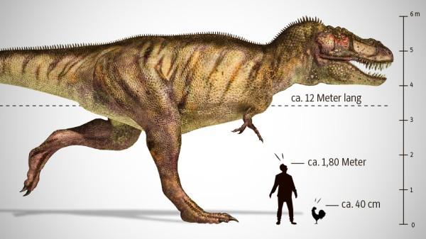 Dinosaurier Aktuelles Zu Den Prähistorischen Reptilie Süddeutschede