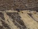 Wassermassen bedrohen Staudammbaustelle (Vorschaubild)