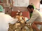Wieder Tote bei Anschlag in Afghanistan (Vorschaubild)