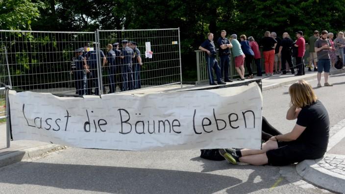 Protest gegen Baumfällung