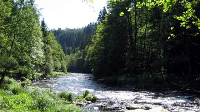 Umwelt und Naturschutz in Bayern Naturschutz