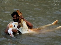 A man plays with his pet goat while taking a bath to cool off in a canal during hot and humid weather in Lahore