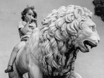 Löwe in Florenz, 1972