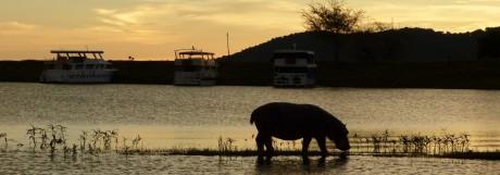 Kreuzfahrt in Simbabwe