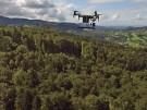 Drohne fliegt über einem Waldstück