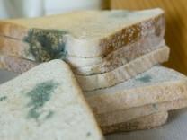Wieder hygienische Mängel bei Großbäckerei