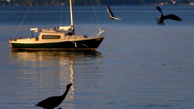 Ein Boot auf dem Ammersee