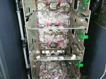 Panische Ratte zerstört Geld in indischem Bankautomaten