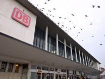 Tauben über dem Hauptbahnhof in Würzburg