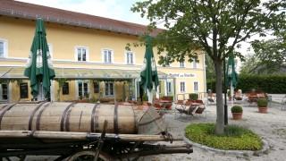 Langenbach Auszeichnung