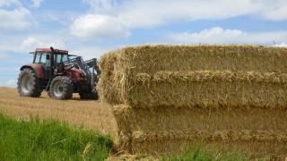 Landwirtschaft Landwirtschaft