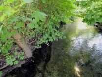 Fundort Gröbenbach