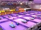 Nord- und Südkorea spielen bei Tischtennisturnier zusammen (Vorschaubild)