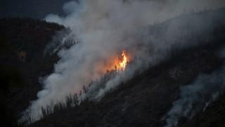 Unglück und Unfall Waldbrände in den USA