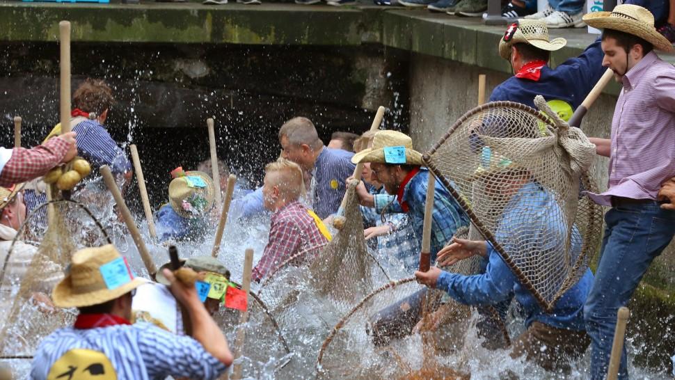Geschlechterstreit im Fischertagsverein
