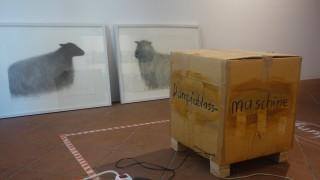 Jahresausstellung AK 68 in Wasserburg