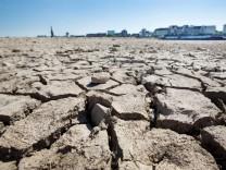 Umweltforscher: Außergewöhnliche Dürre in ganz NRW