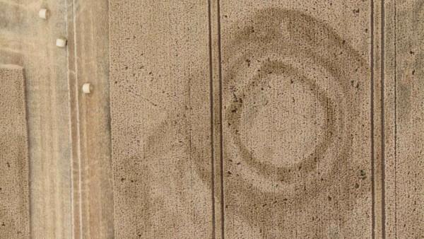 Pöhsig, Lkr. Meißen, Fundamentgräben einer mittelalterliche Burganlagen (13./14. Jh.) mit den schon fortgeschrittenen Mäharbeiten am oberen Bildrand, Aufnahme vom 10. Juli 2018