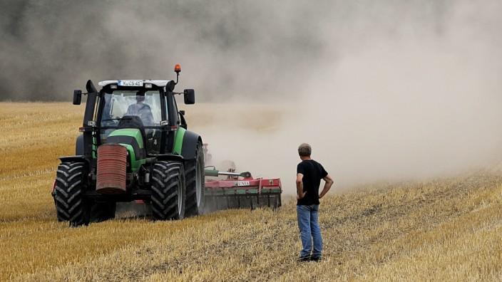 Dürre: Ein Landwirt bei Köln pflügt sein Feld um