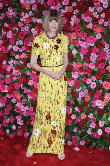 NEW YORK NY JUNE 10 Anna Wintour attends the 72nd Annual Tony Awards at Radio City Music Hall on