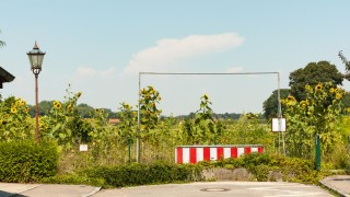 Oberschleißheim München /Oberschleißheim