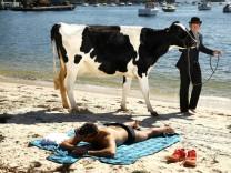 *** BESTPIX *** Surrealist Artist Releases Dairy Cows Into Sydney Surf