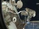 Antenne für Tierbeobachtung erfolgreich an ISS montiert (Vorschaubild)