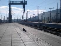 Pasing Bahnhof Gleis 5 Taube