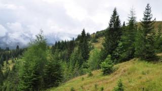 Umwelt und Naturschutz in Bayern Umwelt
