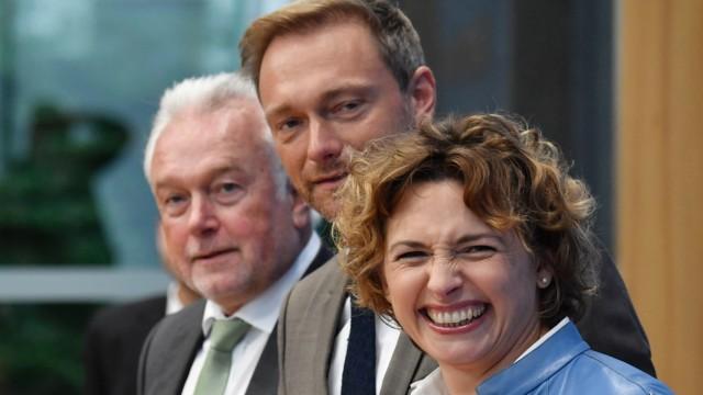 Politik FDP Neonazi-Krawalle