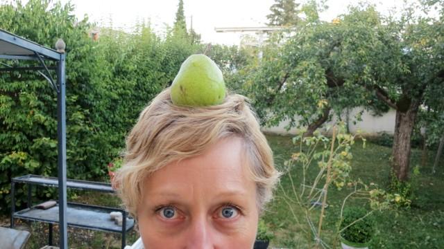 Was macht man mit 250 kg Birnen?