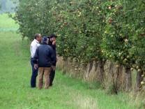 Bioäpfel selbst pflücken; Bei Breitbrunn und Schlagenhofen